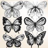 Нарисованное собрание руки вектора детализировало бабочек для дизайна иллюстрация штока