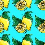 нарисованные вручную иллюстрации Карточка с плодоовощами, лимонами картина безшовная Стоковая Фотография RF