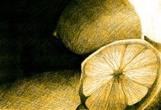 Нарисованные лимоны Стоковая Фотография