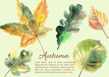 Нарисованные рукой листья осени бесплатная иллюстрация