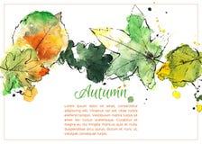 Нарисованные рукой листья осени иллюстрация вектора