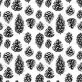 Нарисованные рукой иллюстрации вектора Безшовная картина с конусами сосенки иллюстрация штока