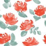 Нарисованные рукой розы акварели вектор картины безшовный Стоковое Изображение RF