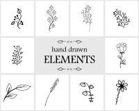 Нарисованные рукой флористические элементы и значки логотипа Милые детали для ваш клеймить Стоковые Фотографии RF