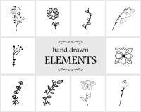 Нарисованные рукой флористические элементы и значки логотипа Стоковая Фотография
