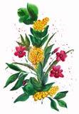 Нарисованные рукой цветки изображения Стоковые Фотографии RF