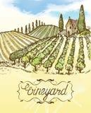 Нарисованный рукой ландшафт виноградника Винтажное illustr акварели вектора Стоковые Фотографии RF