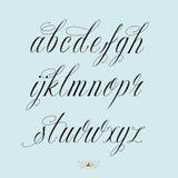 Нарисованный рукой алфавит каллиграфии Стоковые Изображения