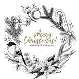 Нарисованный рукой венок рождества Ель, сосна, евкалипт, хлопок, poinsettia, bullfinch, омела, падуб Приветствие вектора иллюстрация штока