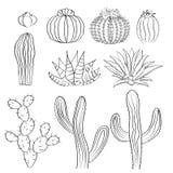 Нарисованный рукой комплект эскиза кактуса Кактусы, шиповатая груша, и столетник Стоковые Изображения