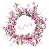 Нарисованный рукой красивый венок цветка Милые вишневые цвета весны Стильный венок Сакуры эскиз бесплатная иллюстрация