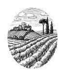 Нарисованный рукой ландшафт виноградника Стоковые Фотографии RF