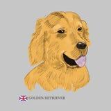 Нарисованный рукой эскиз собаки Стоковая Фотография