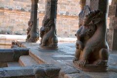 Наружные штендеры mandapa поддержанные путем сидеть на корточках yelis, висок Airavatesvara, Darasuram, Tamil Nadu стоковые изображения rf