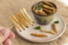 Насекомые еды: Насекомое гусеницы червя удерживания руки женщины бамбуковое зажарило хрустящее для еды как продукты питания в пли стоковые фотографии rf