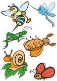 насекомые Стоковое Фото