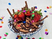 наслаждение шоколада Стоковые Фото