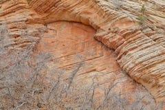 наслаивает zion Юты песчаника национального парка Стоковые Фото