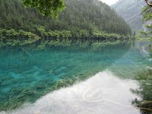 Наследие Jiuzhaigou-мира естественное Стоковые Фото