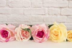 Насмешка Розы пинка вверх Введенная в моду фотография запаса Флористическая рамка, введенная в моду насмешка стены вверх Розовый  стоковые фото