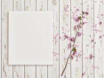 Насмешливый поднимающий вверх плакат с розовым украшением цветка на белом деревянном поле стоковая фотография