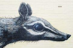 Настенная роспись Numbat, Fremantle, Австралия Стоковые Фото