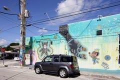 Настенные росписи искусства на Wynwood Стоковая Фотография RF
