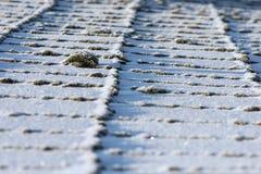 настилите крышу снежок Стоковое Фото