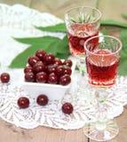 Настойка вишни Стоковое Фото
