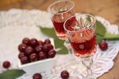 Настойка вишни Стоковое Изображение