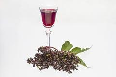 Настойка Elderberry стоковая фотография