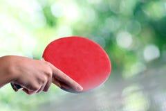 настольный теннис ракетки стоковая фотография rf