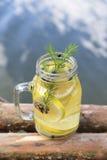 Настоянная вода с иглами лимона и конуса и сосны голубик Стоковое Изображение
