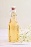 Настоянный сироп elderflower Стоковые Фото