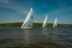Настроение лета: белые ветрила против голубого неба Стоковое Фото