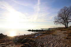 Настроение зимы на красивом пляже Стоковые Фотографии RF