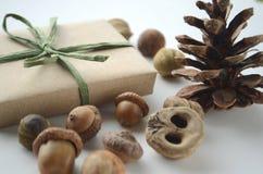 Настроение падения Жолуди, гайки дерева и семена с конусом сосны и подарк-обернутой коробкой в коричневой бумаге и рафии с космос Стоковые Фотографии RF