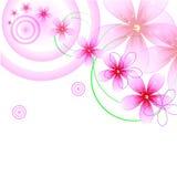 Настроение цветка Стоковые Изображения RF