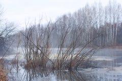Наступление ночи на озере звероловства Стоковые Фото