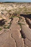 Насыпь песка Стоковое фото RF