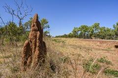 Насыпь термита в захолустье Австралии стоковая фотография rf