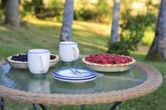 Наслаждаться жизнью сельской местности. Чудесное утро лета Стоковое Изображение RF
