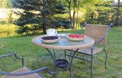 Наслаждаться жизнью сельской местности. Чудесное утро лета Стоковое Изображение