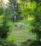 Наслаждаться жизнью сельской местности. Чудесное утро лета Стоковые Изображения RF