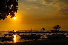 наслаждаться заходом солнца Стоковое Изображение RF