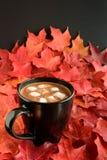 Наслаждаться падением с чашкой горячего шоколада стоковые изображения rf