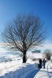 Наслаждаться чудесным зимним днем Стоковые Фотографии RF