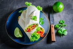 Насладитесь вашим буррито с томатным соусом, овощами и мясом Стоковое Изображение RF