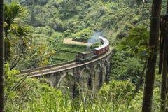 Натренируйте на мосте 9 arche, Элле, Шри-Ланке Стоковая Фотография RF