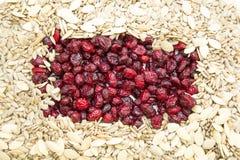 Натуральные продукты стоковое изображение